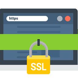 آیا استفاده از گواهینامه ssl در وب سایت ها ضروری است؟